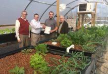 aitc garden grants