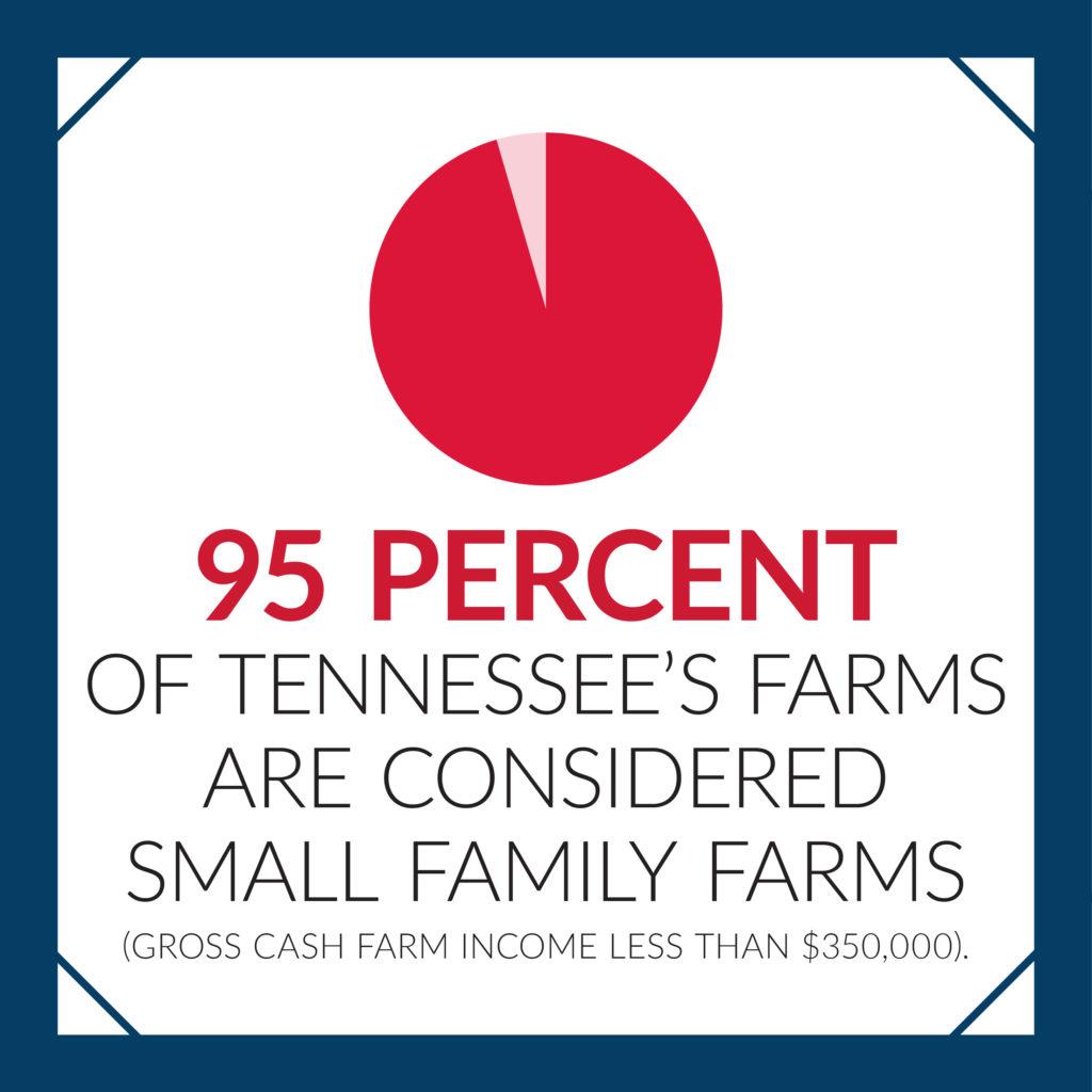 The Average Tennessee Farm