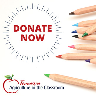Donate to AITC